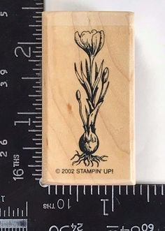 Rubber Stamp Sprouting Flower Stampin Up Botanical Floral Flourish Garden T539 #StampinUp