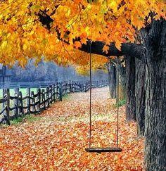 Autumn Swing...