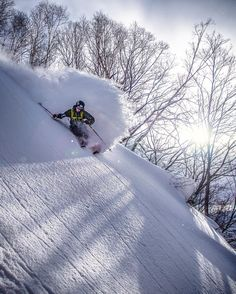 @pierssolomon having some fun in the trees . We found a nice spot today off of the bird here at @kirororesort @dpsskis #SASSJapan #JAPANuary #Japow #GetsomeSASS #Skiing #Snowboarding #Backcountry #powfordays #pillows by @lucasmoorephoto