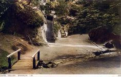 Chine Hollow, Shanklin, Isle of Wight