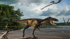 90-million-year-old find suggests complex ear was key to beast's dominance - Artist's reconstruction of Timurlengia euotica, an early relative of Tyrannosaurus rex whose keen hearing probably made it an effective predator.