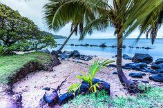 Little Beach, Princeville Kauai by Daryl L Hunter Princeville Kauai, Hawaii Landscape, Photography Classes, Married Life, Oahu, Mountains, Wall Art, Beach, Travel