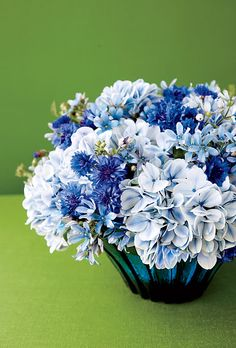 Hydrangeas, cornflowers and tweedia