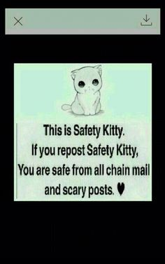 Safety kitty repost for safety y'all