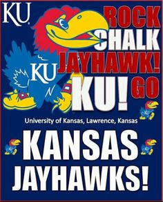 This full color Officially Licensed flag is polyester. It has two grommets for flying the flag outdoors, but also makes a great wall décor indoors. Kansas Basketball, Basketball Teams, Sports Teams, Backlit Signage, Go Ku, U Rock, University Of Kansas, Kansas Jayhawks, Sports Fan Shop