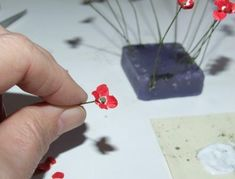 WW1 Poppies - Exclusive DIY Web Project | Features | Collectors Club of Great Britain