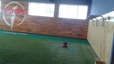 TURF COMPLETE W EDGE SIGNATURE BALLS TO THE WALL