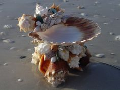 Shell Pedestal Dish...use as a holder for jewelry or ???