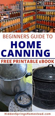 FREE Printable Guide to Home Canning Basics Canning food at home will be easy with this Home Canning Guide for Beginners. Learn the basics of canning food to get a good understanding of how to do home canning properly and safely. Home Canning Recipes, Canning Tips, Canning Beans, Canning Food Preservation, Preserving Food, Chicken Curry, Canning Vegetables, Veggies, Conservation