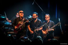 blue oyster cult - Yahoo Image Search Results