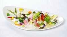 Kazuya Best Restaurants In Auckland, Best Dining, Trip Advisor, Ethnic Recipes, New Zealand, Pictures, Kitchens