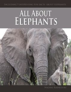 Elephants are highly sociable. Many can see elephants in the circus or at the zoo. These large mammals has two species that are recognized, the African elephant and the Asian elephant. All children love animals and this book, All about Elephants, will keep your little ones captivated.