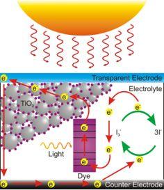 Dye Sensitised Soal Cells use Nanmaterials - M R Jones Best Mattress, Nanotechnology, Solar, Cabbages