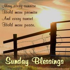 50 Best Happy Sunday Quotes To Share Happy Sunday everyone! Relax and enjoy your Sunday and to get your day started off right we have some inspirational Sunday quotes for you to share. Sunday Morning Quotes, Sunday Wishes, Sunday Greetings, Good Sunday Morning, Happy Sunday Quotes, Blessed Quotes, Good Night Quotes, Good Morning Wishes, Morning Messages