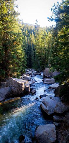 Nature Images, Nature Photos, Wonderful Places, Beautiful Places, Aspen Colorado, Animals Of The World, Landscape Photographers, World Heritage Sites, Beautiful Landscapes