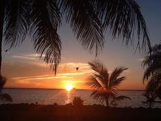 Sunset Dental Cancun photos