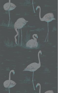 Flamingos wallpaper by Cole and Son.