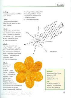 [flores+5.5.jpg]