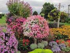 El Arte de Diseñar Jardines o Paisajismo
