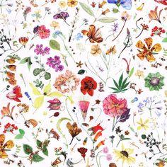 Floral Eve D Liberty of London Tana Lawn Fabric