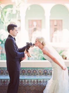 Wedding Day Pooch Smooch | Michelle March Photography | More on SMP -- http://www.StyleMePretty.com/florida-weddings/coral-gables/2013/12/03/biltmore-hotel-wedding-by-michelle-march/