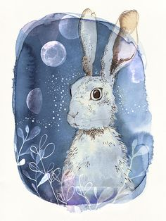 Cyanotype hare by Catherine Campbell of my folk lover