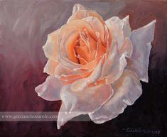 Una rosa per te, 12.07.17