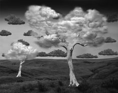 Clever Photo Manipulations by Thomas Barbéy (14 Pictures)