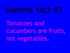 Rich Colosimo: Useless fact #1 Me: Useless!!?!??!?!?!?!?!? The hosts of 'Veggie Tales' are fruits your life is a lie!!!