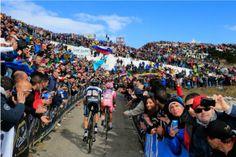 Giro d'Italia 2014 Stage 20