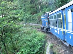 Der Toy Train durch Darjeeling, eine enge Angelegenheit. Foto: Doris Darjeeling, Dory, Fun Facts, India, Train, Goa India, Darjeeling Tea, Funny Facts, Strollers