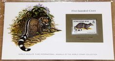 World Wildlife Fund WWF Animals of the World - Five-banded Civet - Hong Kong      http://autopartspuller.com/ Great Sale 50% off entire store!! Copper, Glassware, Wood Crafts, Scrap Booking   Also Find us on:  http://hometownvintage.com http://autopartspuller.com @HomeTownVintage @autopartspuller @preppershowto http://facebook.com/hometownvtg http://facebook.com/AutoPartsPuller