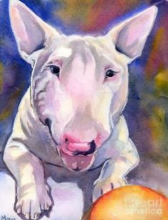 Maria  Reichert | WATERCOLOR | Bull Terrier