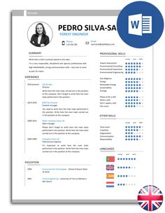 Resumé (CV) model fully editable in Word. The model is organised in text boxes, so you can easily change the font and colour of the text. Files include all the icons seen in the image. Cv Models, Resume Models, Job Resume, Best Resume, Free Resume, Resume Writing, Writing Advice, Resume Design Template, Resume Templates