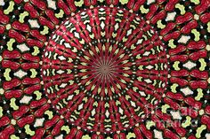 """Roses Kaleidoscope Under Glass 21:  This beautiful kaleidoscope was digitally created from a photograph I took of a lovely bouquet of roses. I also added an """"under glass"""" special effect digitally to the center of the picture. The """"Fine Art America"""" watermark (in the lower right corner) will NOT be on your purchased product.  Prices start at $4.30"""