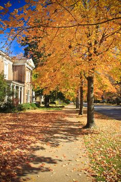 Main Street Murfreesboro in the Fall