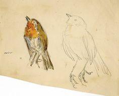 beatrix potter drawings   72: Beatrix Potter drawing of Robin for Peter Rabbit : Lot 72