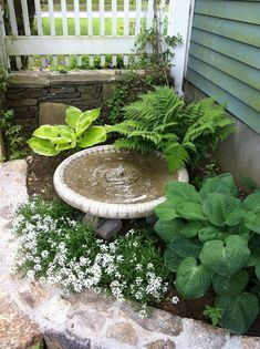 Fresh And Beautiful Front Yard Landscaping Ideas 15