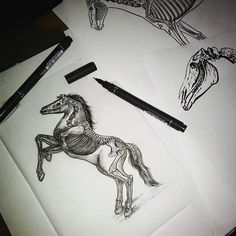 Felipe Cesar Curitiba horse skeleton skull black art sketch tattoo