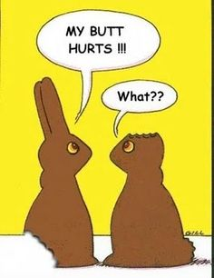What do chocolate Easter Bunnies talk about? I have a shirt with this on it... lol