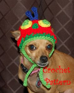 Crochet Pattern Caterpillar Dog Hat by poshpoochdesigns on Etsy, $3.99