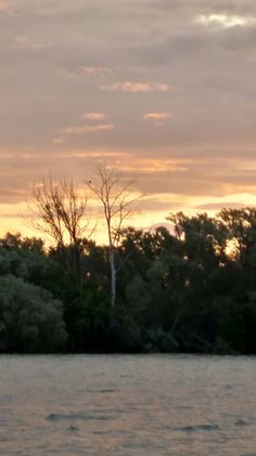 Sunrise on Cayuga Lake two hours East of Buffalo. Those are a pair of Bald Eagles in the tree.