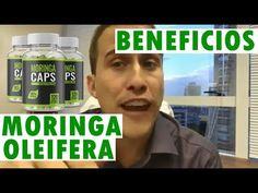 Moringa Oleifera Beneficios!! ❤ Veja os Maiores Benefícios da Moringa Oleifera! - YouTube