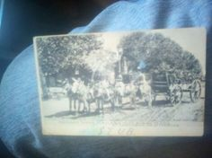 1907 Postcard New Mexico (front)  Text: MEXICAN WOOD HAULERS WITH BURRO TEAMS AT CARLSBAD, NEW MEXICO