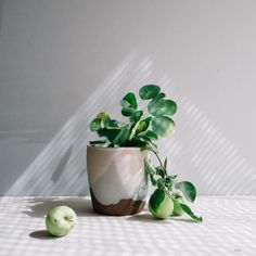 custom vase- matte g
