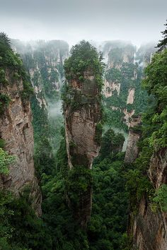 The Gathering of Heavenly Soldiers, Zhangjiajie National Forest Park, China...amazing.