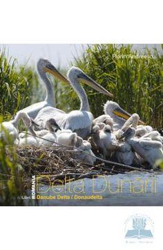 Science and nature Danube Delta, Romania, Science And Nature, Garden Sculpture, Bird, Outdoor Decor, Animals, Google Search, Amazing