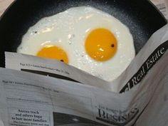 egg reading