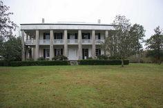 ELLERSLIE PLANTATION - Bains, Louisiana 1828-1832. James Hammond Coulter