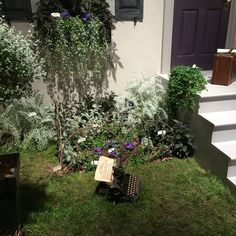 Philadelphia 2016 Horticultural Show - the Edgar Allen Poe Front Porch - this should have won First Place!!